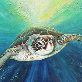 Cruising the EAC, green sea turtle by Debra Dickson