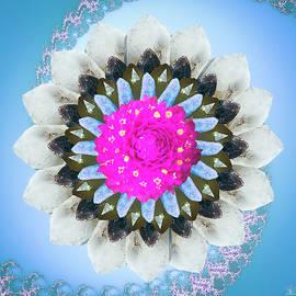 Crystal Flower by Kelly Larson