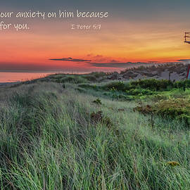 Cure for Anxiety by Marcy Wielfaert