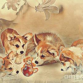 Curious Corgi Puppies by Kathy Kelly