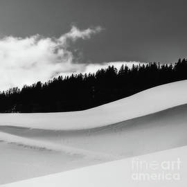 Curves by Flo Photography