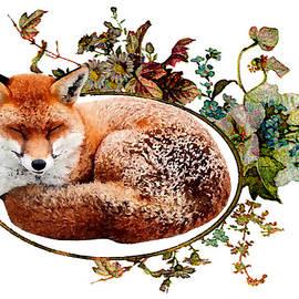 Cute sleeping fox by Ekaterina Yakshina