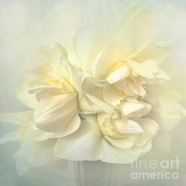 Daffodils On Display by Luther Fine Art