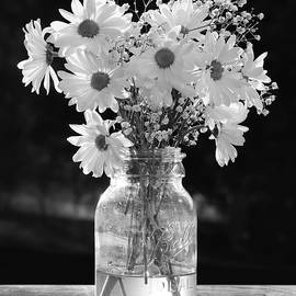 Daisies - He Loves Me Lots by Lori Deiter