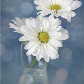 Daisies in a Glass Vase by Teresa Wilson