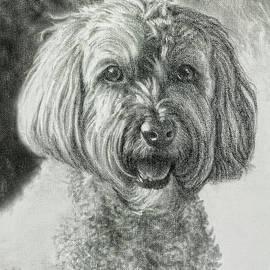 Daisy by Bill Finewood
