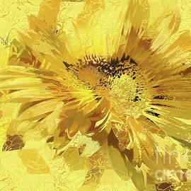 Daisy Burst by Jean OKeeffe Macro Abundance Art