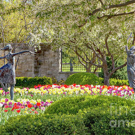 Dancing Through The Tulips by Kevin Anderson