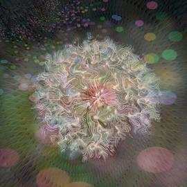 Dandelion Daze Square Format by Marilyn DeBlock