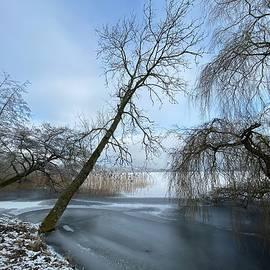 Danish Winter  by Colette V Hera Guggenheim