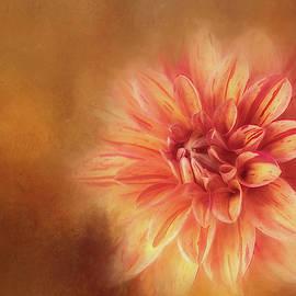 Darkly Textured Dahlia by Terry Davis