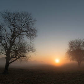 Dawn in the Fog by Jeff Oates Photography