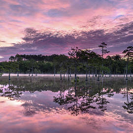 Dawn Over the Cypress by Eric Albright