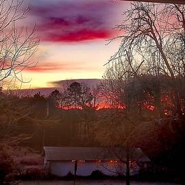 Dawn Over The Pasture by Pamela Smale Williams