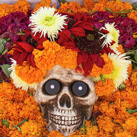 Day of the Dead Flowers and Skull by Lindley Johnson