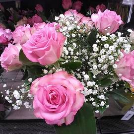 Dazzling Pink Roses by Charlotte Gray