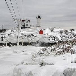 Dead of Winter by Steve Brown