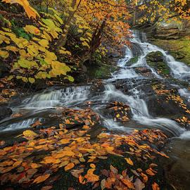 Dean's Ravine Falls Autumn by Bill Wakeley