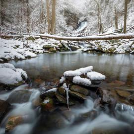 Dean's Ravine Winter 2 square by Bill Wakeley