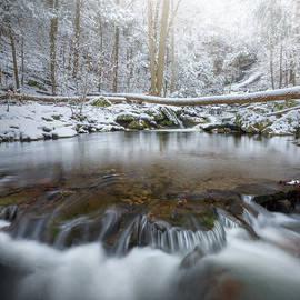 Dean's Ravine Winter square by Bill Wakeley