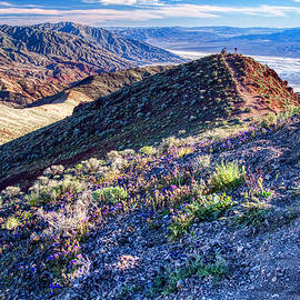 Death Valley at spring by Tatiana Travelways