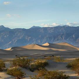 Death Valley Dunes by Gordon Beck