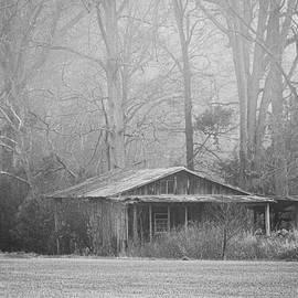 Decaying Old Barn in Fog - Pamlico County North Carolina by Bob Decker