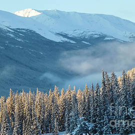 December Sunrise in the Canadian Rockies