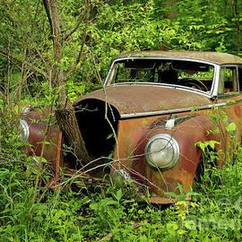 Deep Woods Mercedes 180 by Steve Gass