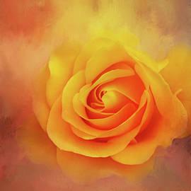 Deep Yellow Rose by Terry Davis