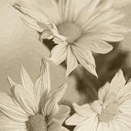 Delicate Beauty by Deborah Benoit