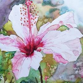Delicate Hibiscus  by Ibolya Taligas
