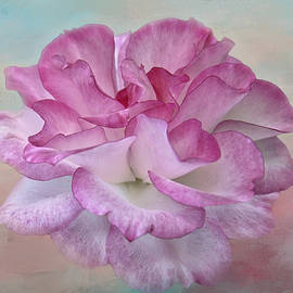 Delicate Pink Rose Painterly by Isabela and Skender Cocoli