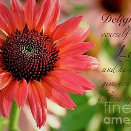 Delight Yourself In the Lord by Robin Erisman