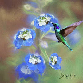 Delphinium and the Hummingbird by Diane Schuster