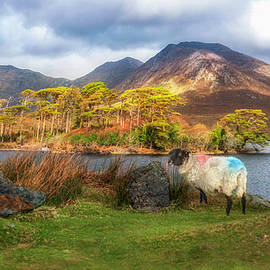 Derryclare Lough Ireland by Rob Hemphill