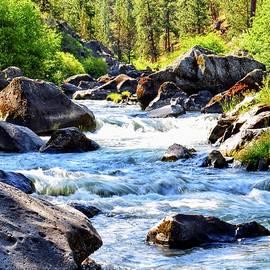 Deschutes River at Riley Ranch by Dana Hardy