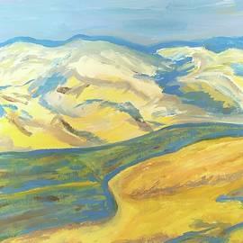 Desert Mountain Streams by Esther Newman-Cohen