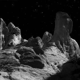 Desert Sandstone Formations In Moonlight by Frank Wilson