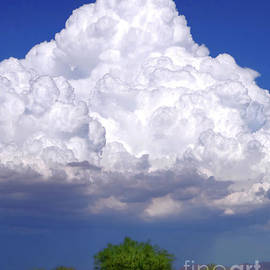 Desert Summer Storm by Douglas Taylor