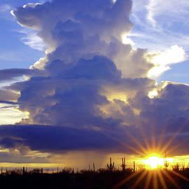 Desert Summer Sundown by Douglas Taylor