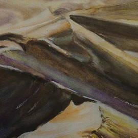 Desert Waves by Leah Saban