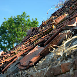Dilapidated Roof by Bill Lee