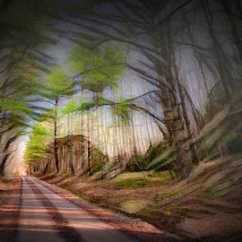 Dirt Road Vortex by Jim Love