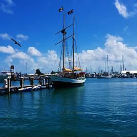 Docks of Key West 6 by Aldane Wynter