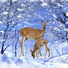 Doe And Her Fawn Winter Scene by Sandi OReilly
