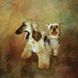 Dog Pals by Terry Spear