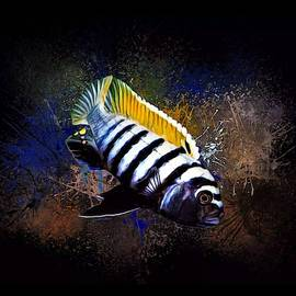 Dogtooth Cichlid Portrait  by Scott Wallace Digital Designs