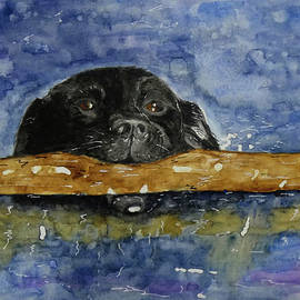 Dory in Water by Diane Holmes