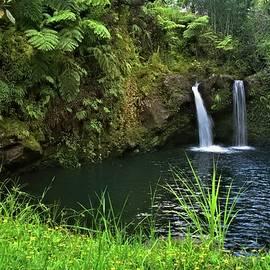 Double Waterfall on Kaieie Stream by Heidi Fickinger